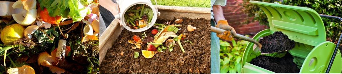 Fertilizante natural - Imagen