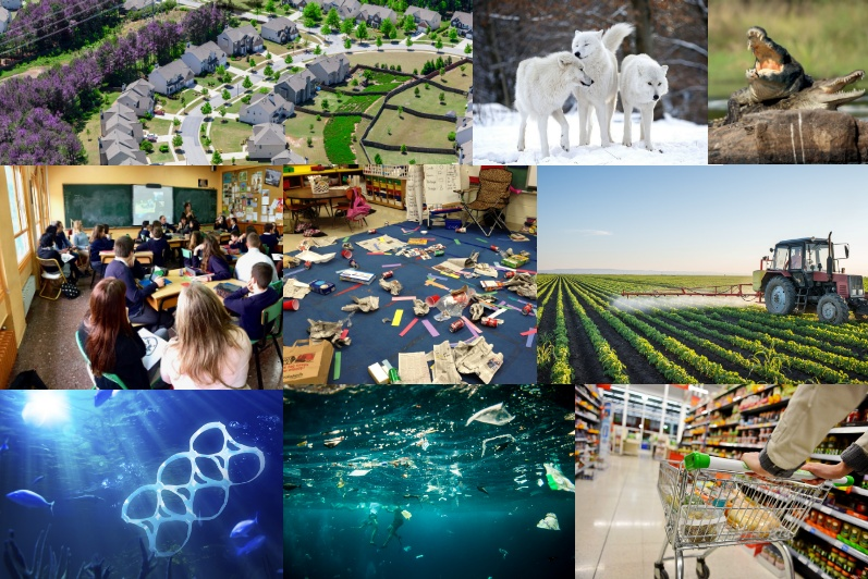 Ensayo del cambio climático Introducción - Imagen