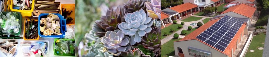 Reciclar, plantas resistentes a la sequía y paneles solares - Imagen