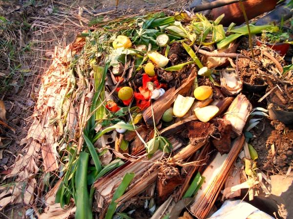 materia verde rico en nitrogeno compost